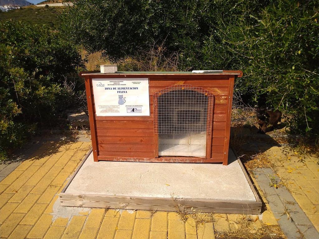 Cat Feeding Station