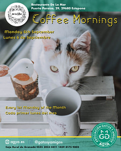 20210906-coffee-mornings