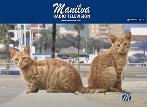 manilva-television-agya