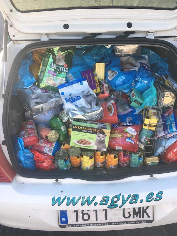 coche-alimentos