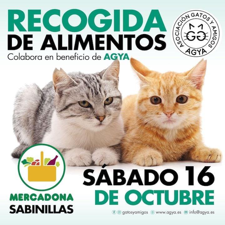 20211016-Mercadona-Sabinillas